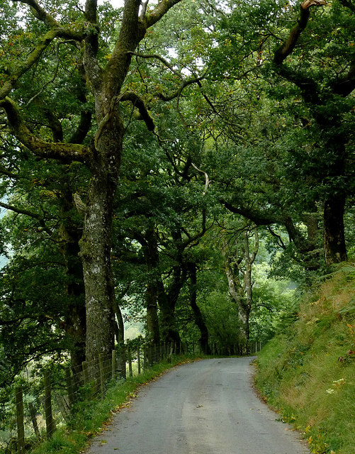 The lane to Abergwesyn, near Beulah, Powys