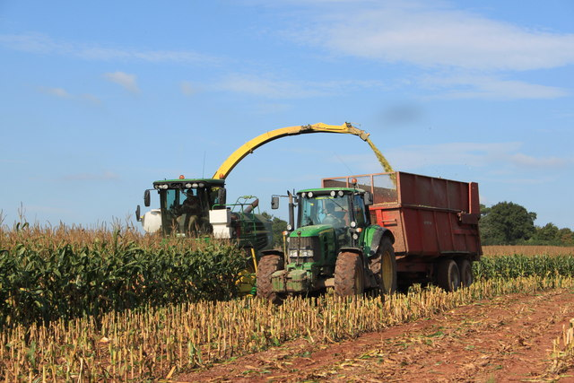The 2013 maize harvest near Aston Crews