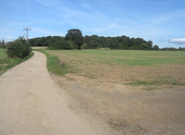 Farm track - Manydown Estate