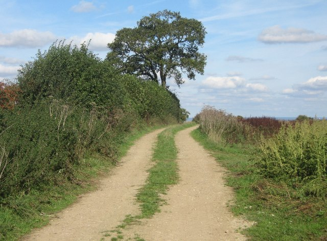 Farm track on the Hampshire Downs