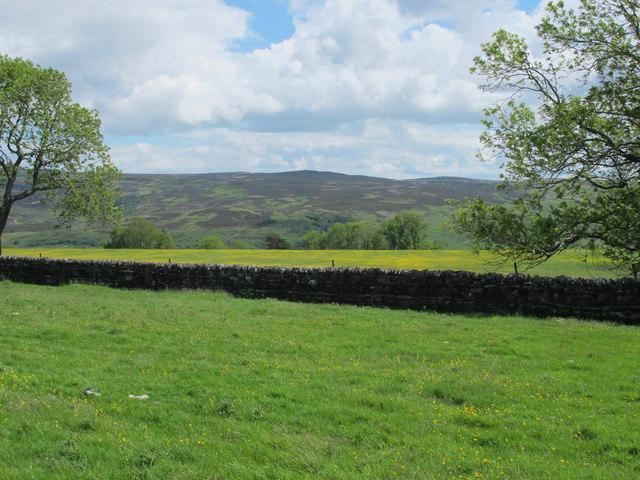 Farmland north of High Shaw