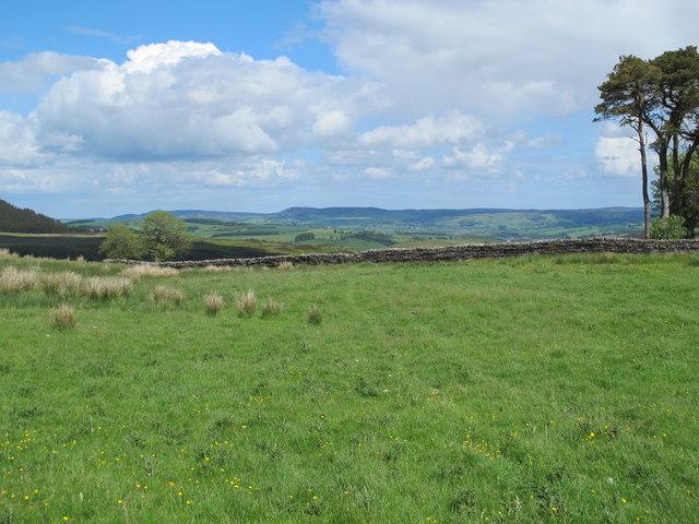 Farmland north of High Shaw (2)