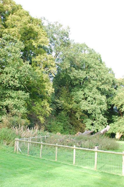 Dairy Wood, Home Farm, Tatton Estate
