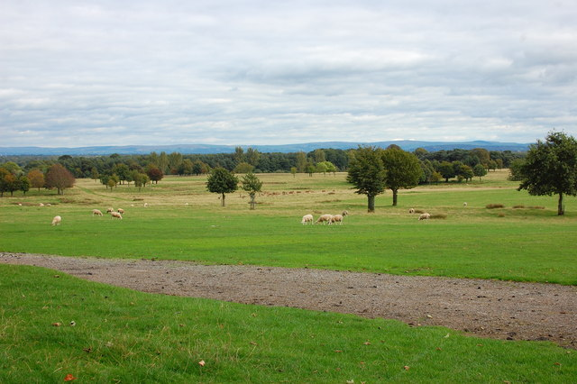View across Tatton Park