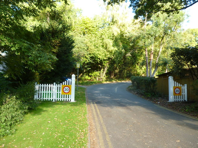 Outwood Lane:  The Glade