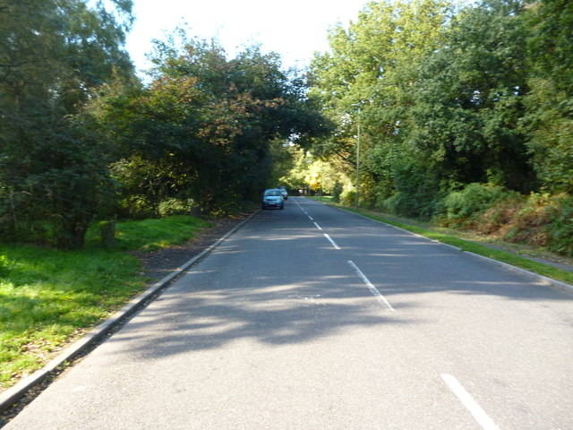Banstead Heath:  Mill Road