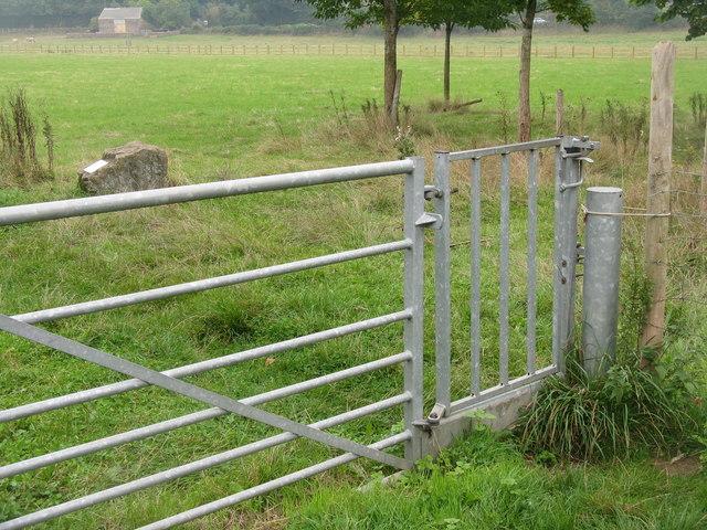 Gate in a gate