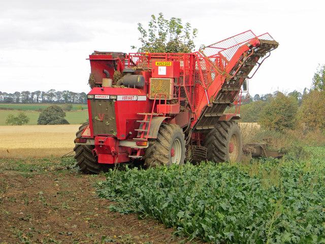 Barrow Vale - Beet Harvesting