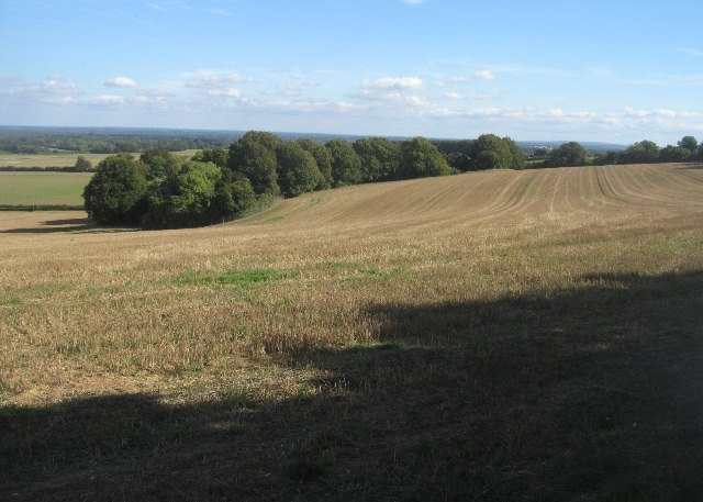 View along the Hampshire Downs