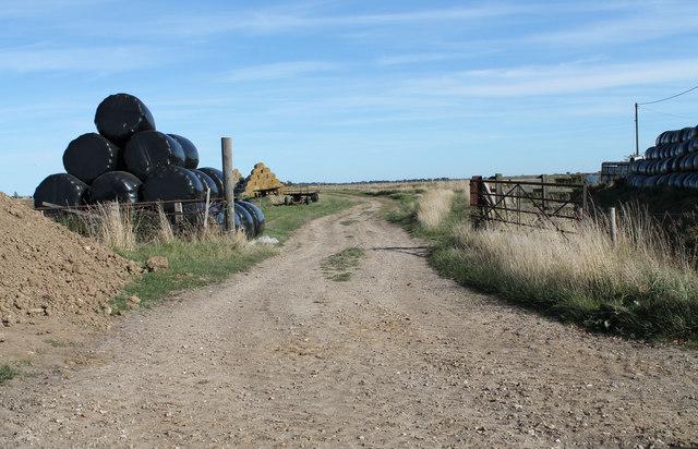 Farm track at Walk Farm