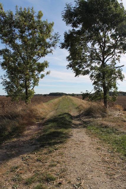 Craker Lane (a track)