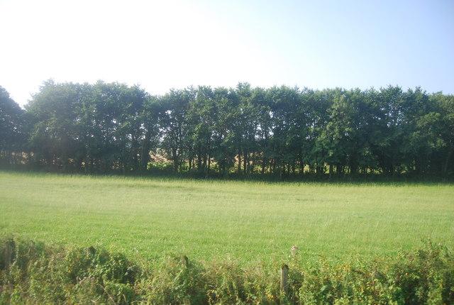 Farmland near Manorbier