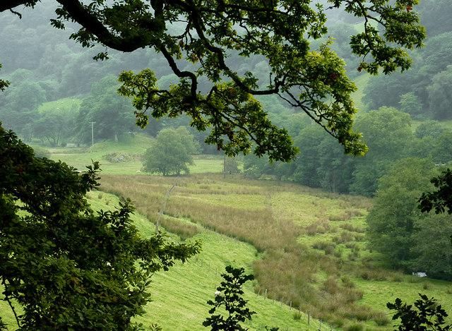 Farmland in Cwm Cnyffiad, Powys