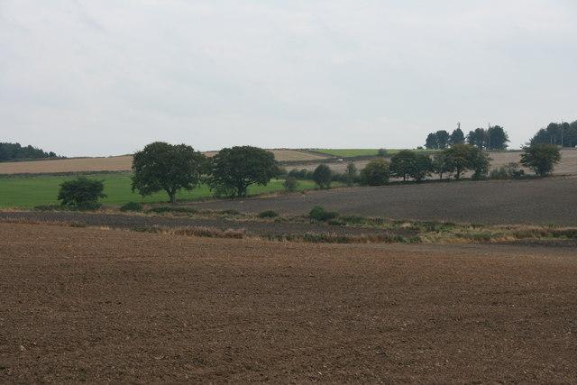 Empty fields  below Amber Hill
