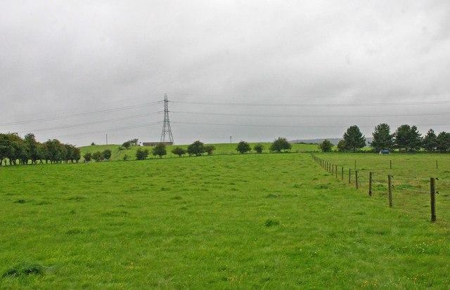Field adjacent to Bunkers Hill Wood, Staffs