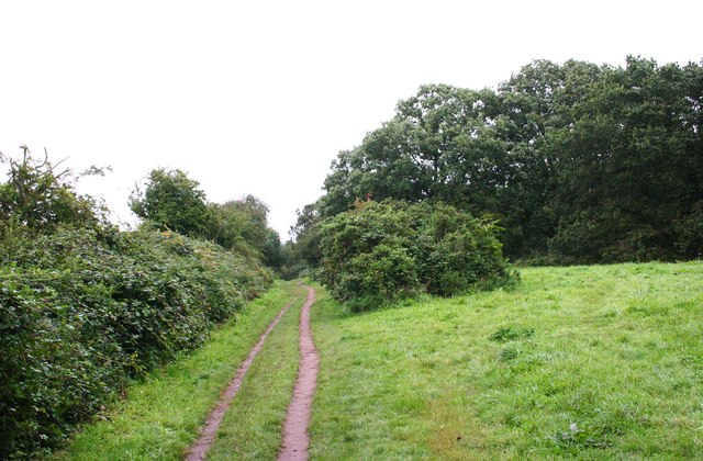 Public footpath by western edge of Bunkers Hill Wood, Staffs