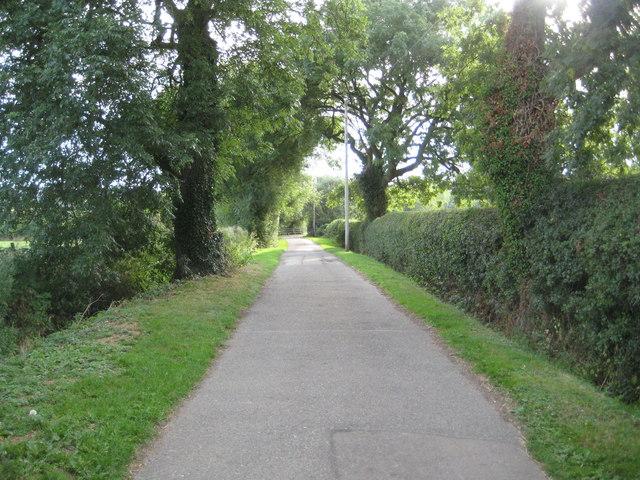 Stoke Hammond: Lane to Paper Mill Farm