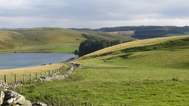 Dyke, Girnside Hill