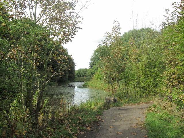 Barnsley Canal near the Dearne Valley Park