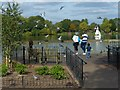 TQ3369 : Viewing platform, South Norwood Lake by Robin Drayton