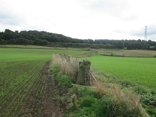 Fertile land south of the River Dearne