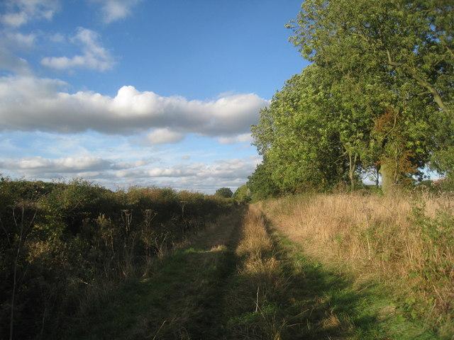 Track near Owsthorpe