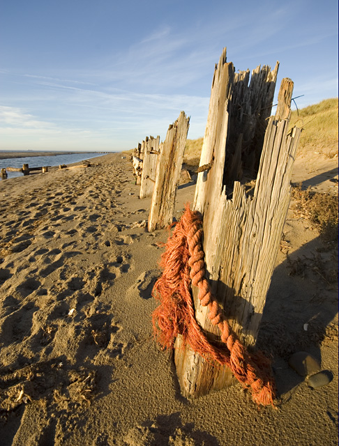 Decaying posts on Spurn