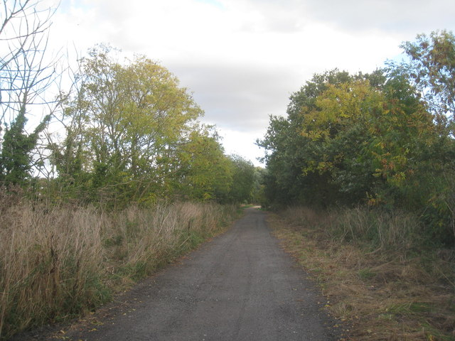 Roadway to Greave's End