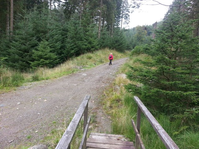 Track near Harrop Tarn