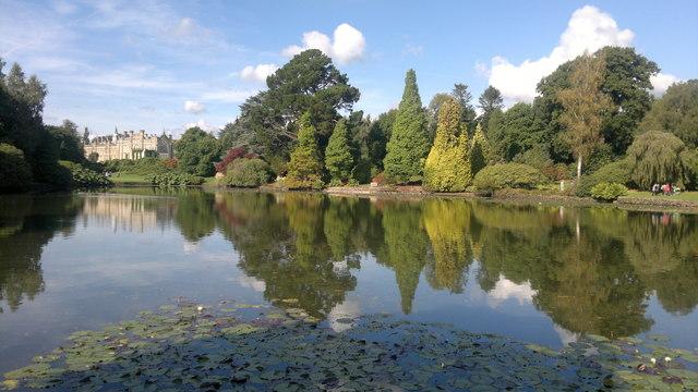 Ten Foot pond at Sheffield Park