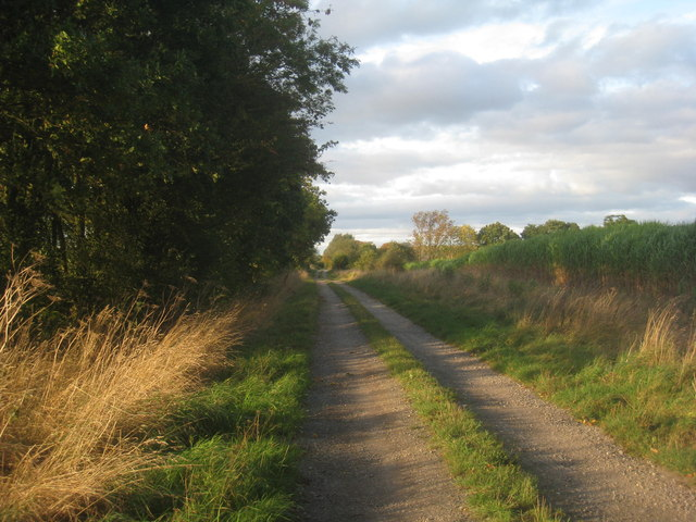 The track to Bloomhill Farm