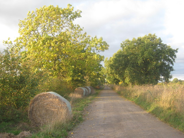 New Carr Lane