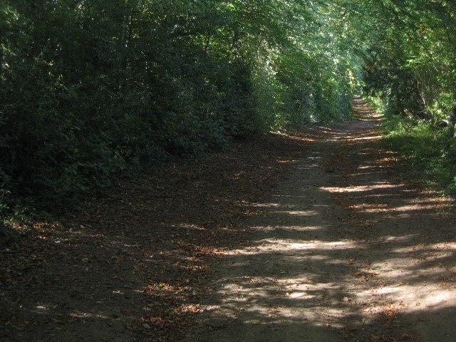 Whitedown to Ibworth byway