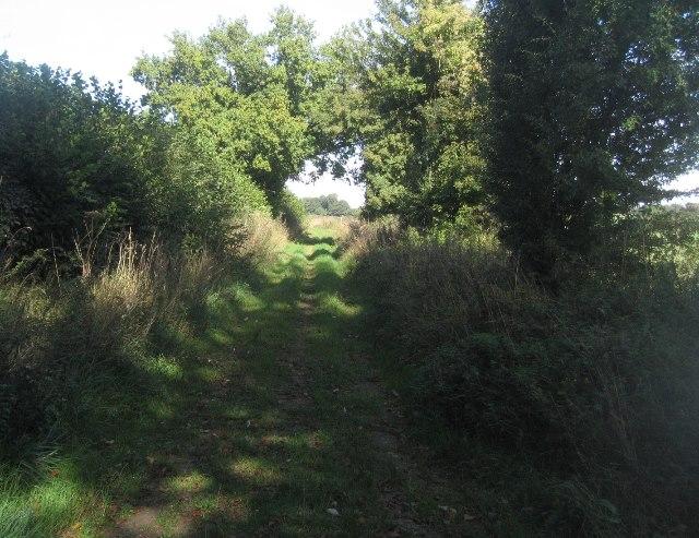 One end of Woodgarston Lane
