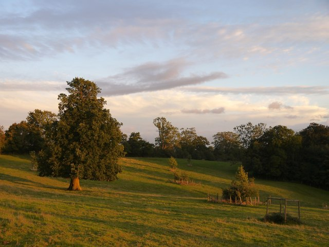 Evening at Leith Hill Place