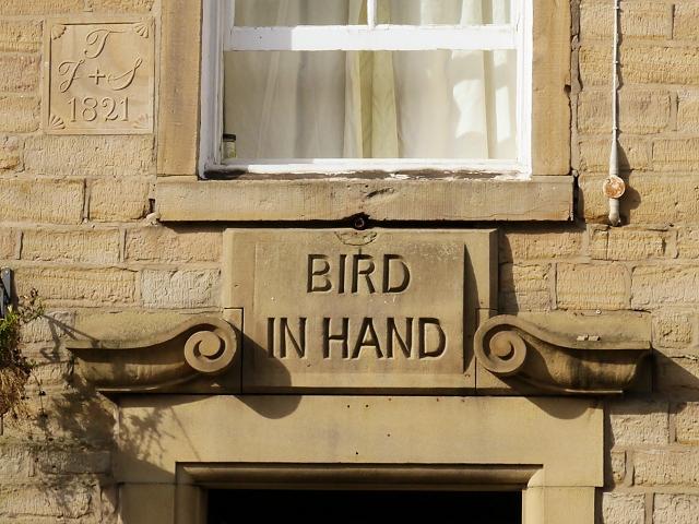 Bird In Hand (detail)