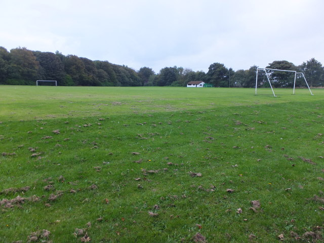 Football pitch, Tweedmouth Park