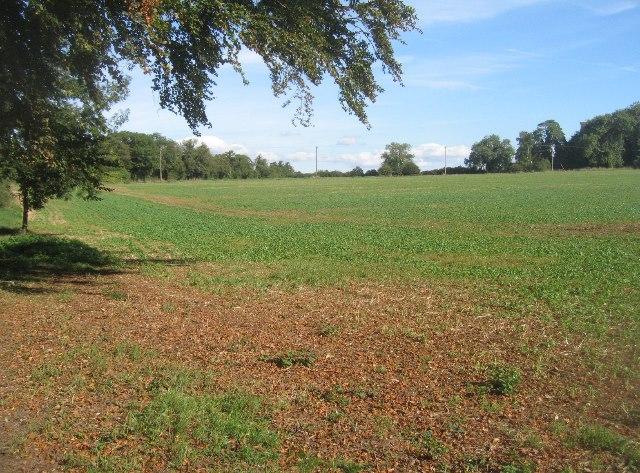 Jagos Field (27 acres)