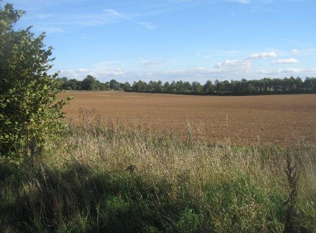 Fields south of Manor Farm