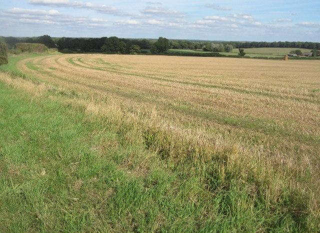 Fields near Lower Farm