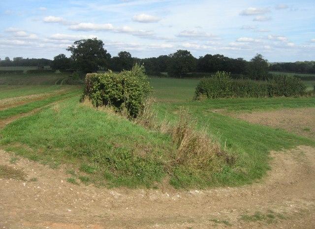 Footpaths & farm tracks meet