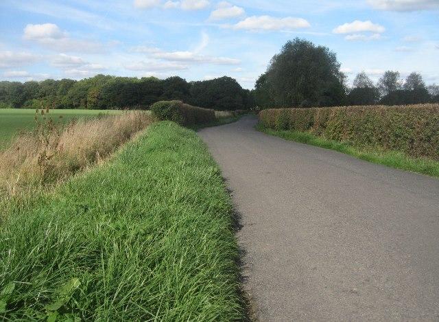Lane towards Ramsdell