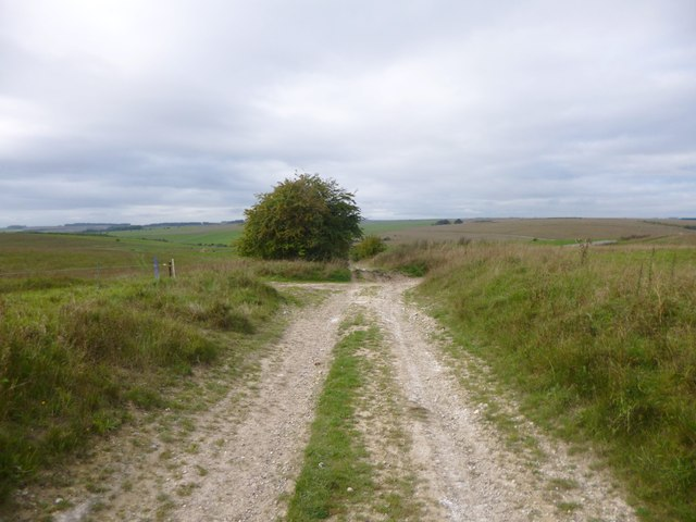 Chitterne, byway and track junction