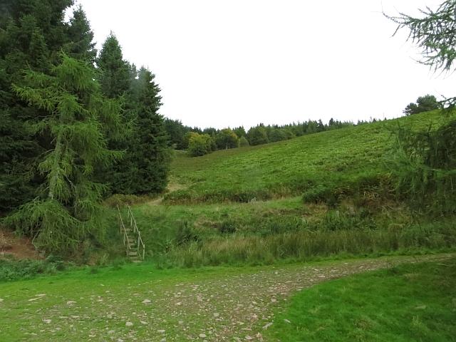 Reentrant,  Edgarhope Wood