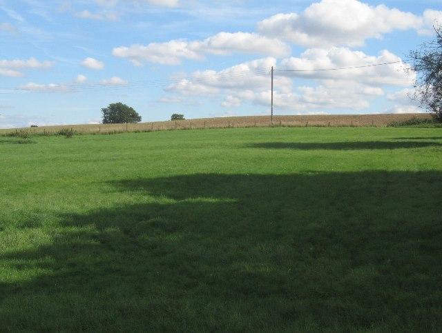 Fields by Lower Farm