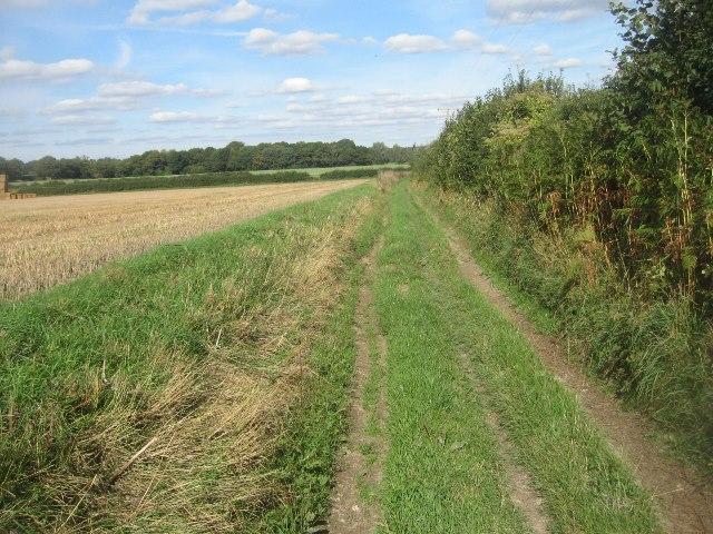 Byway approaching Lower Farm