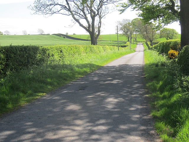 Road near Busbie Mains