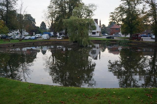 The pond at Godstone