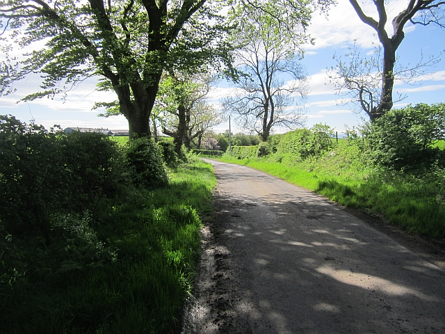 Road south of Busbie Mains