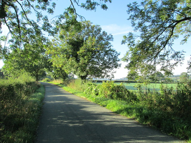 Country lane near Dunwood